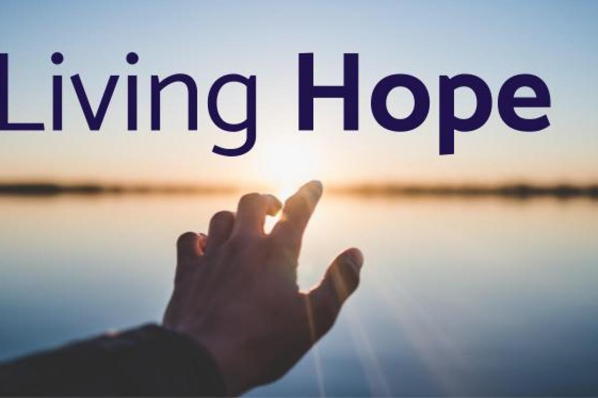 Living Hope: Standing Firm In The Faith